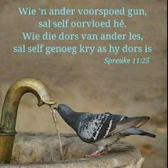 Wie 'n ander voorspoed gun, sal self oorvloed hê. Wie die dors van ander les, sal self genoeg kry as hy dors is Biblical Verses, Bible Verses Quotes, Scriptures, Christian Friends, Christian Quotes, Afrikaanse Quotes, Thought For Today, Good Morning Inspirational Quotes, Daughters Of The King