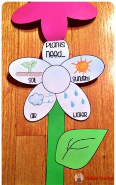 Bitkilerin Büyümesi ve İhtiyaçları  İle İlgili Sanat Etkinlikleri
