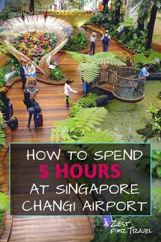 How To Spend 5 Hours at Singapore Changi Airport Hawaii Travel, Thailand Travel, Asia Travel, Croatia Travel, Bangkok Thailand, Greece Travel, Italy Travel, Singapore Guide, Singapore Travel Tips