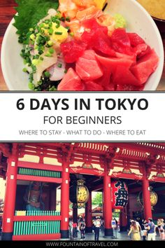 Fountain of Travel 6 Day Tokyo Itinerary - First-time visitors to Tokyo will find an abundance of things to see, eat and do. Use this 6 day Tokyo itinerary to help you plan your first visit!
