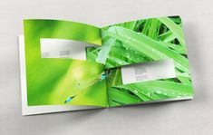 Interesting use of paper, folding, printing and design tech in a little booklet. I wanna do stuff like this.
