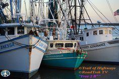 """Darien, Georgia.   RoadTrek TV©  All Rights Reserved  """"Its Been a Most Excellent Adventure"""" http://trailsofhighways.com https://twitter.com/TrailofHighways https://www.linkedin.com/pub/road-trekin/46/331/18a https://twitter.com/RoadTrekTV https://www.facebook.com/pages/RoadTrek-TV/1424277497868439?fref=ts #Organic #Content #Birdwatching #Birding #Photography #Travel #Atlantic #Ocean  #Beach #Saltwater #Fishing #Shrimp #Grits #Marketing #TrailofHighways #SocialMedia #Travel #Georgia #Coast…"""