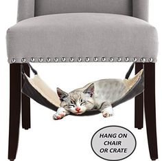 Cat Hammock Bed - City Kitty - Hanging Soft Pet Bed Use with Crate, Cage or Chair For Kitten, Ferret, Puppy, or Small Pet By Le Fur - Mink Grey