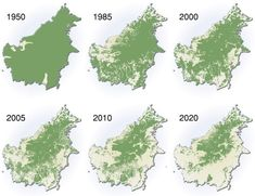 Deforestation of the Amazon Rainforest past and into the future. Do you like breathing. Better wake up now.