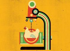 Chicken Safety: Consumer Reports Investigates