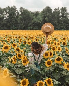 Spring is almost here & were a little bit excited Spring vibes from the beautif… Der Frühling ist fast da. Sunflower Field Photography, Spring Photography, Photography Poses, Venice Photography, Yellow Photography, Photography Composition, Wedding Photography, Landscape Photography, Photography School