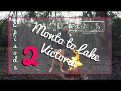 In this fortnights episode, we have just left our free camp at Calliope and arrived in the quaint little town of Monto located inland of Gladstone in Q. Caravan Hacks, First Drive, Australia Travel, Youtubers, Victoria, Make It Yourself, Adventure, Videos, Australia Destinations