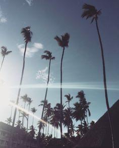 Day dreaming of sunbeams and crooked palm trees #islandcompany #islandlife  www.islandcompany.com