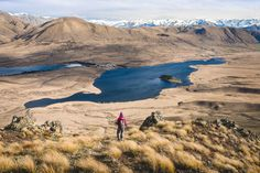 Mt Guy, Hakatere Conservation Park - Hiking & Tramping in NZ - Wilderness Magazine NZ