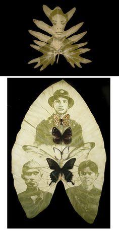 by Binh Danh, http://binhdanh.com/