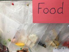 Observing how food changes over time Container, Food, Essen, Meals, Yemek, Eten
