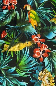 tropical print - Google Search