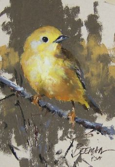 """Warbler - Pastel Painting by Mike Beeman  (Looks like the """"Goldfinch"""" we have here in Southern Ontario.)"""