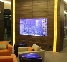 Акриловые аквариумы на заказ Flat Screen, Ocean, Electronics, Blood Plasma, Flat Screen Display, Flatscreen, The Ocean, Dish Display