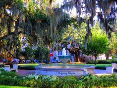 Orleans Square in Savannah, GA
