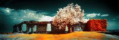 Infrared Photography, Painting, Art, Art Background, Painting Art, Kunst, Paintings, Performing Arts, Painted Canvas