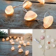of Scallops with-muscheln_coole-decoration idea-with-diy-lichterkette-tinker- The post Crafting with shells – 50 cool deco ideas appeared first on Woman Casual - DIY and crafts Diy Home Crafts, Fun Crafts, Deco Cool, Diy Y Manualidades, Easy Diy Christmas Gifts, Ideas Geniales, Diy Décoration, Shell Crafts, Spring Crafts