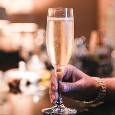 What the difference between Sparkling wine Vs Champagne Wine? Read on to know the fascinating difference between the two. Read On Sparkling Wine Vs Champagne, Sparkling Wine Brands, Champagne Region, Champagne Bottles, Pinot Blanc, Pinot Gris, White Wines, Wine Education