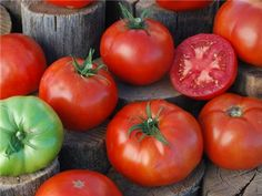 Peron Tomato from Baker Creek -- formerly offered by Gleckler's Seedsmen