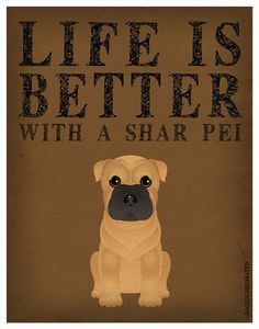 Hey, I found this really awesome Etsy listing at https://www.etsy.com/listing/101885654/life-is-better-with-a-shar-pei-art-print