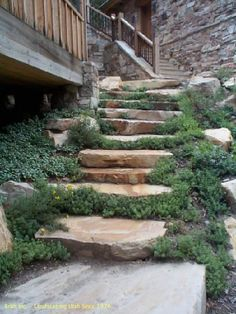 Google Image Result for http://brattinc.com/images/Pavers_Walls/Rock_Walls/Rock_steps2.jpg