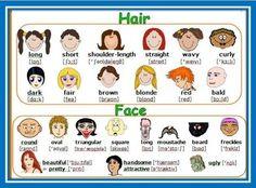 Hair and Face vocabulary                                                                                           Más