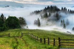 Dzembronya mystical fog, the Ukrainian Carpathians, photo 1