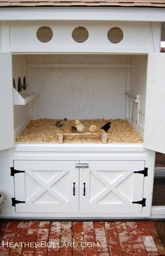LOVE this chicken coop!!