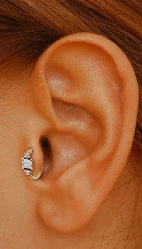 wanting to get this one but with a labret... not a hoop