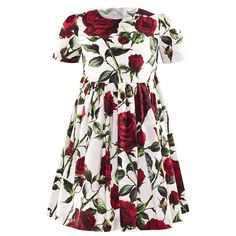Dolce & Gabbana Rose Print Party Dress