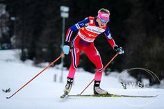 FIS Cross Country World Cup