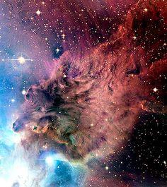 Nebulosa Piel de Zorro