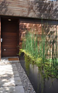 modern entry design by austin architect Alterstudio. Idea for planting side of driveway- horsetail? Modern Landscaping, Front Yard Landscaping, Landscaping Ideas, Long Planter, Steel Planter, Porch Planter, Metal Planter Boxes, Raised Planter, Planter Ideas