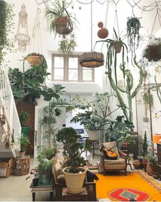 some serious plant goals some serious plant goals The post some serious plant goals appeared first on Wohnung ideen. Interior Plants, Interior And Exterior, Interior Garden, Plantas Indoor, Decoration Plante, Room With Plants, Plant Rooms, Plant Aesthetic, Decoration Inspiration