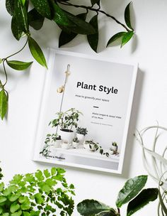 8 Stylish Ways To Decorate + Live With Plants