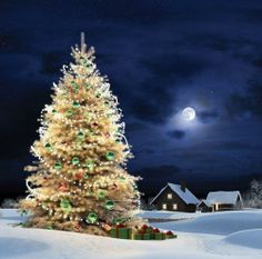 ~ Beautiful Tree of Christmas in the moonlit sky with the blanket of snow beneath ~ silent peaceful night ~ ♥ :)