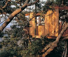 Big Sur Resorts | Post Ranch Inn - Tree House | Luxury Resorts in California