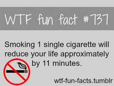 WTF Fun Facts is updated daily with interesting & funny random facts. We post about health, celebs/people, places, animals, history information and much more. New facts all day - every day! Funny Weird Facts, Wtf Fun Facts, Random Facts, Quit Smoking Motivation, Help Quit Smoking, Wow Facts, True Facts, The More You Know, Good To Know