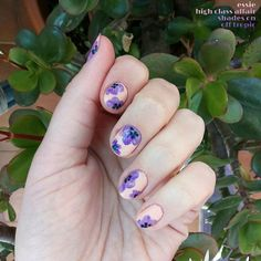 Another shot 📷..... Aaand swipe 👈 to close up 🔎 😉 + lettering inspired by #kellycreates 😍. 💅 are from #essiespring2016 collection #highclassaffair +#matteaboutyou + #shadeson diluted flowers 💐 + #offtropic dots. #violets #notd #springmani #springnails #essiepolish #essieapproved #essielove #nailart #nails #manicura #manicure #tbt #thursday #flowernails #flowers #nailsoftheday #nailsofinstagram #nailsofig #spring2017 #nailstagram #instanails #nailspiration