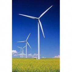 Wind Turbines In Canola Field Near St Leon Manitoba Canvas Art - Dave Reede Design Pics x Technology Posters, Technology Wallpaper, Technology Design, Energy Technology, Flower Painting Canvas, Canvas Art, Wind Turbine Residential, Canola Field, Futuristic Technology