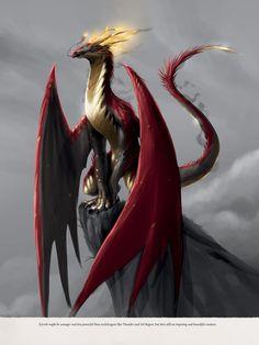 The Dragon Prince Book, Dragon Princess, The Last Airbender, Gravity Falls, Art Sketches, Legends, Character Design, Anime, Fandoms