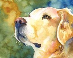 Golden Retriever impresión del arte de la acuarela Original - 8 x 10