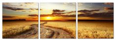 Savanna Sunset. 3 Panel Giclee Framed and Ready to Hang. Modern Art Wall Decor by USADECOR on Etsy https://www.etsy.com/listing/180659073/savanna-sunset-3-panel-giclee-framed-and