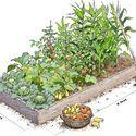 Tips on building garden beds