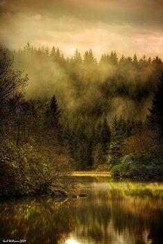 Autumn Mists    Loch Ard, Trossachs Scotland
