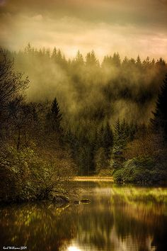 Autumn Mists    Loch Ard, Trossachs, Scotland