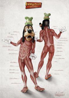 Goofys Anatomy by AlessandroConti.deviantart.com on @deviantART