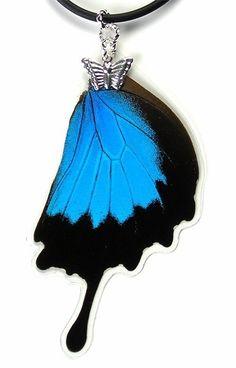 Real Butterfly Wing Necklace Papilio ulysses Hindwing  by mybugs, $5.00