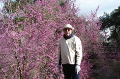 Me... Jim Gray in front of a blooming RedBud at UCD Arboretum