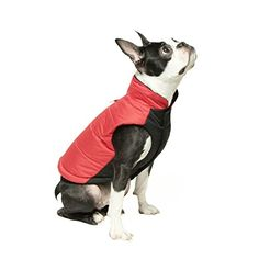 Gooby Winter Wind Breaker Dog Parka for Small Dogs Red Large * For more information, visit image link.
